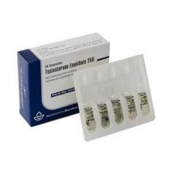 10 amps Testosterone Enanthate (Iran) 250mg vial